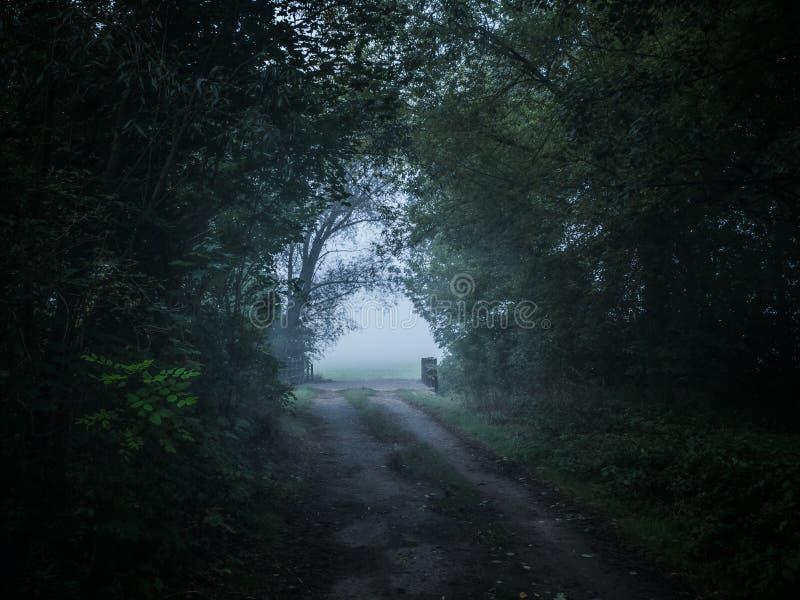 Un chemin brumeux d'agriculteurs images libres de droits
