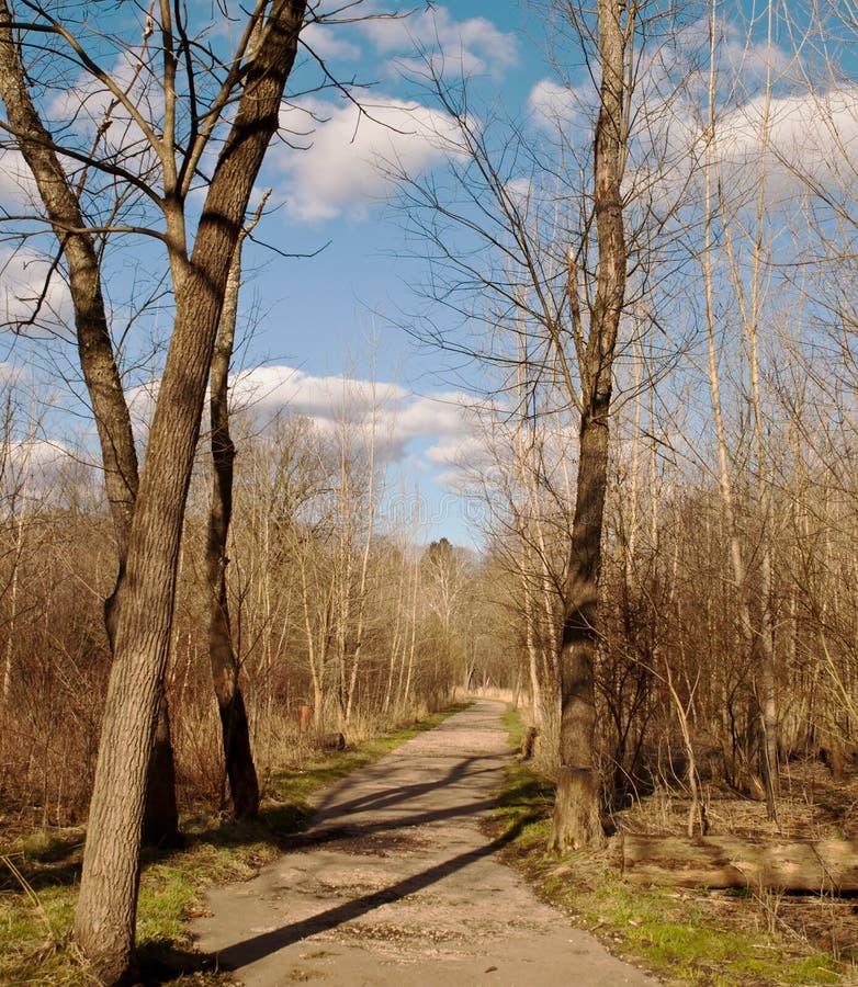 Un chemin de marche dans les bois une journée de printemps images stock