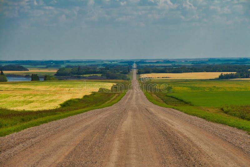 Un chemin de terre droit dans les plaines photo libre de droits