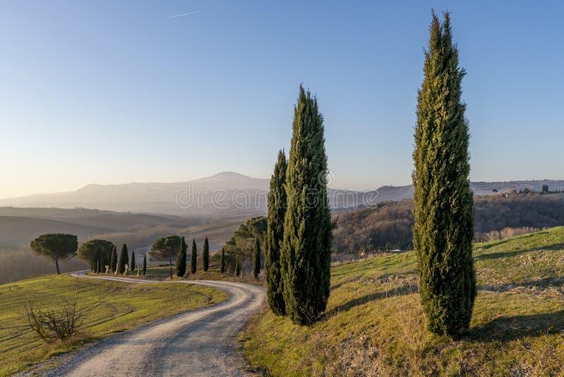 Un chemin de terre s'enroule par la campagne de Sienese près de San Quirico, Sienne, Toscane, Italie image stock