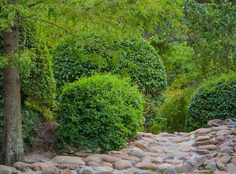 Un chemin en pierre à travers le jardin de Largo Central Park dans Largo, la Floride, Etats-Unis photos libres de droits