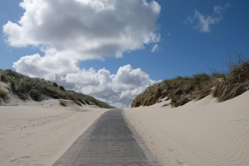 Un chemin entre les dunes photographie stock libre de droits