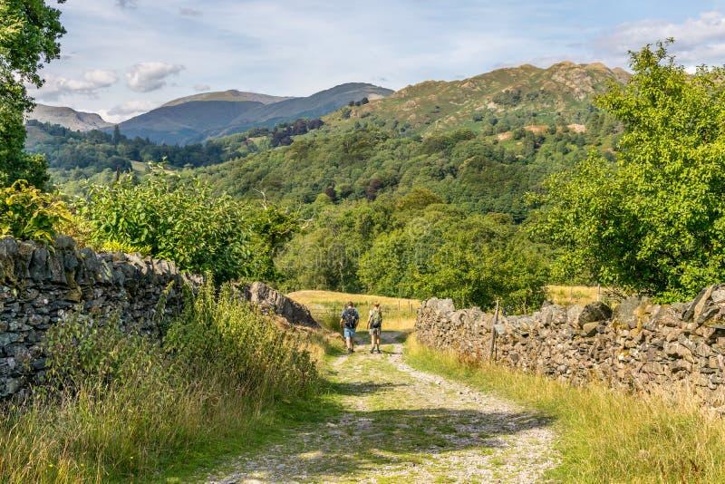 Un chemin menant par un champ vers une forêt et des montagnes photos stock