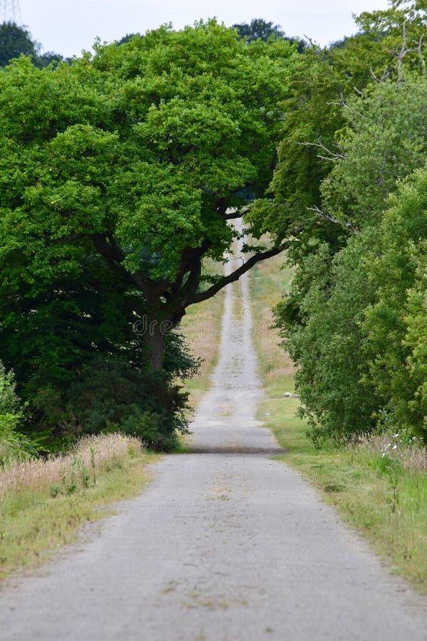 Un chemin montant dans la distance image libre de droits