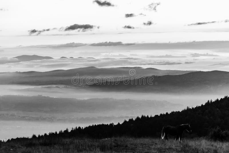 Un cheval à peine évident sur une crête de montagne au coucher du soleil, au-dessus d'un val photos stock