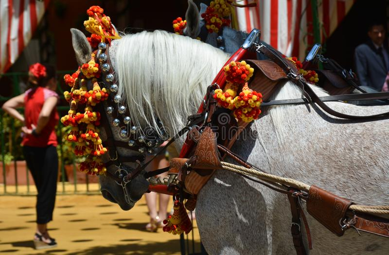 Un cheval et une femme chez Feria de Abril photo libre de droits