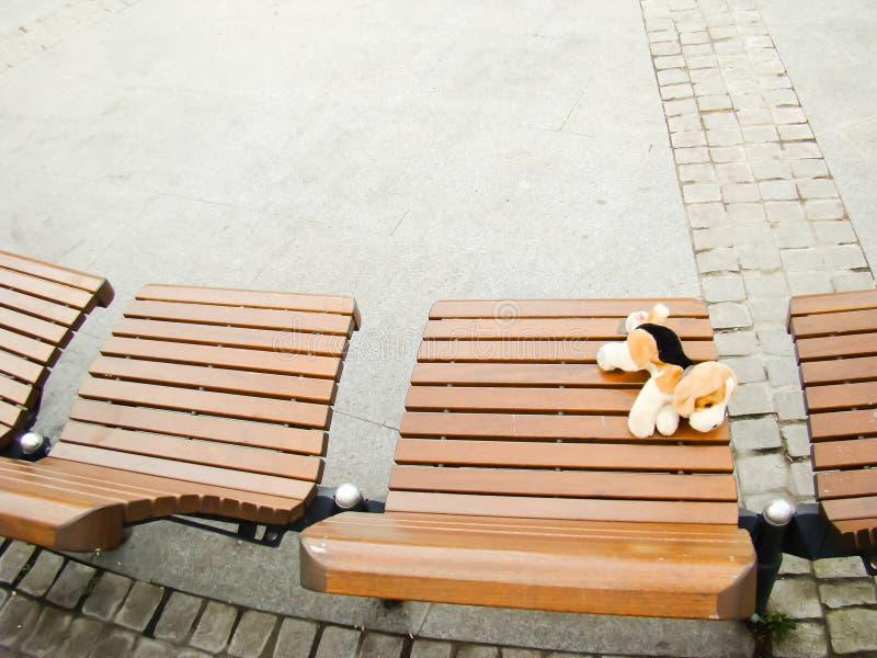 Un chien de jouet sur un banc en parc d'IOR photos stock