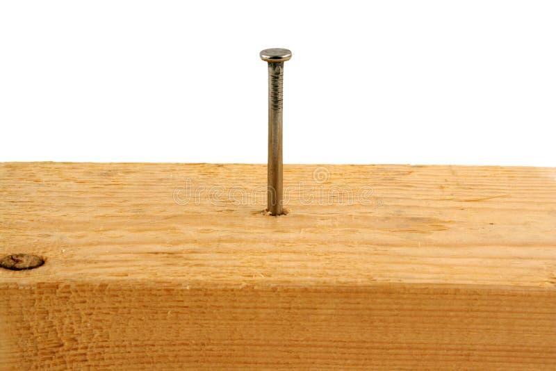 Un chiodo dei dieci penny in una parte di legno fotografia stock