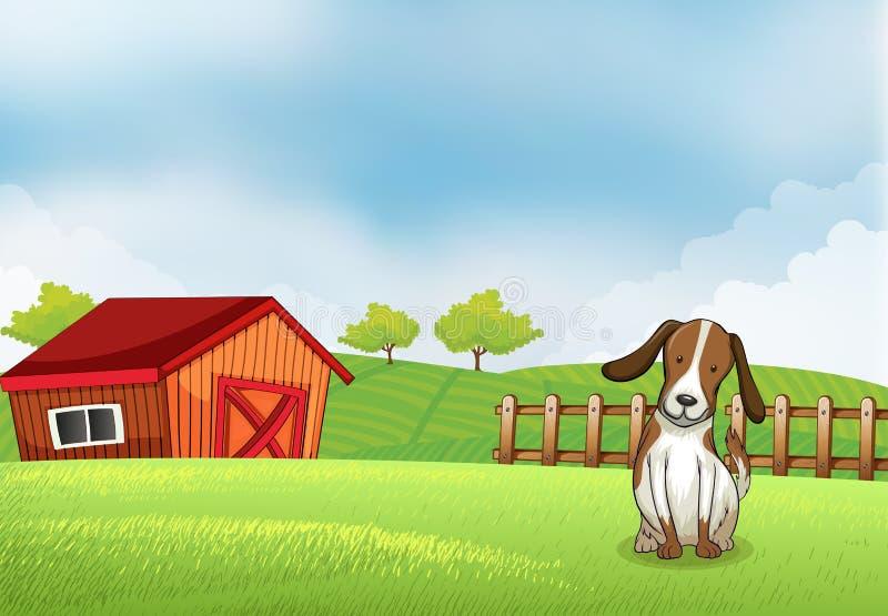 Un chiot dans la ferme illustration stock