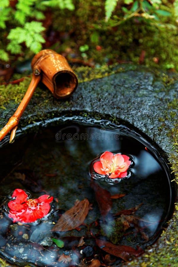 Un chozubachi en pierre de lavabo par une salle japonaise de thé, avec un scoop en bambou sur le bassin de l'eau et les belles fl image libre de droits