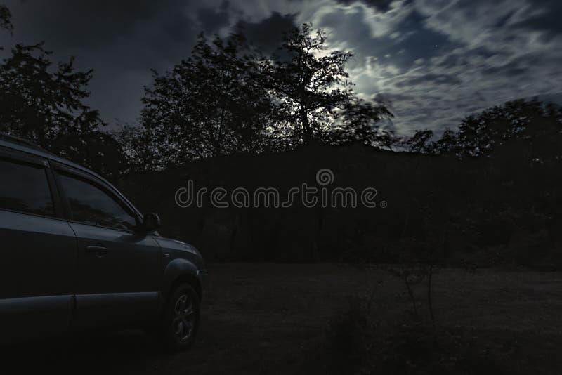 Un ciel nocturne nuageux avec la lumière de lune dans la forêt mystérieuse images libres de droits