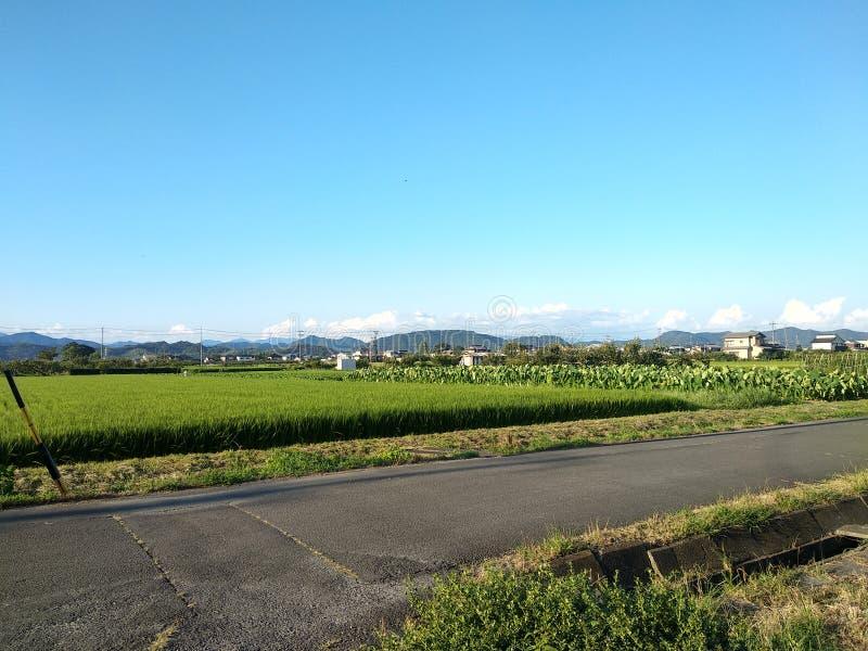 Un Cielo Blu In Farmland immagini stock