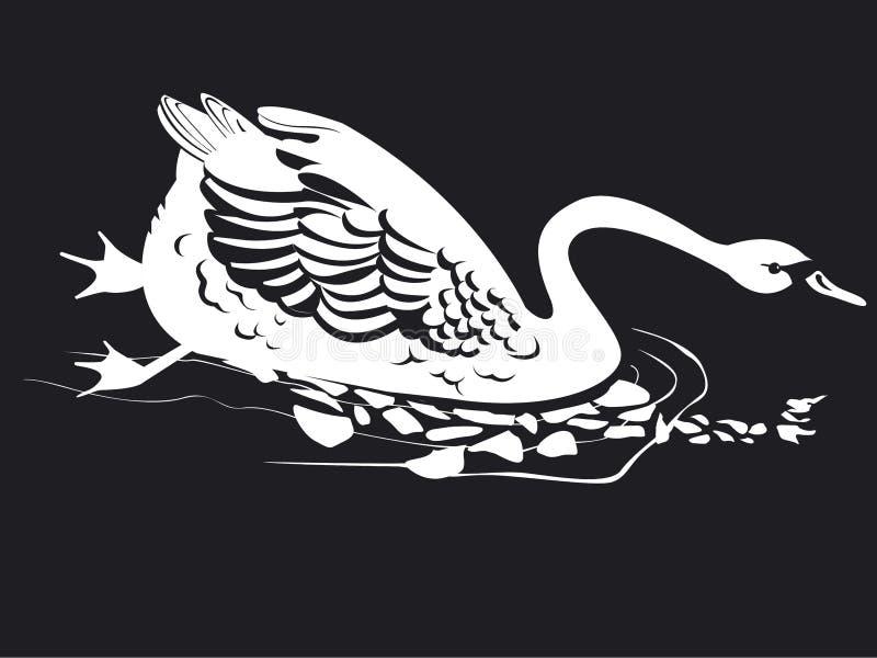 Un cigno solo sta nuotando illustrazione di stock