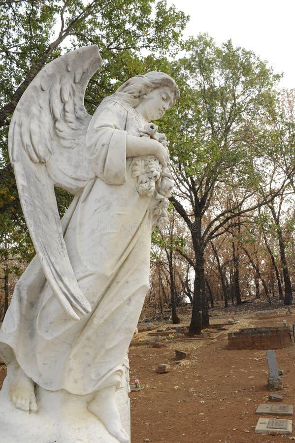 Un cimetière brûlé après le feu 2015 de vallée dans le comté de Lake, la Californie images stock