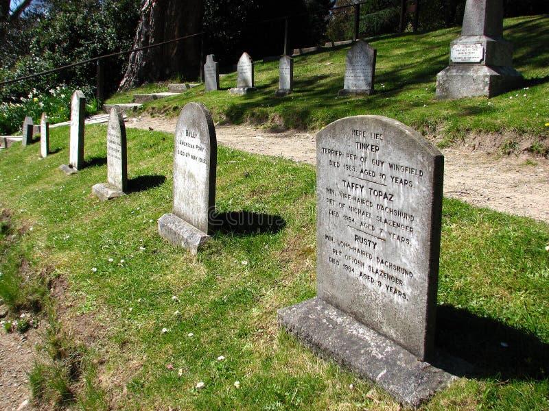 Un cimitero dell'animale domestico immagini stock libere da diritti