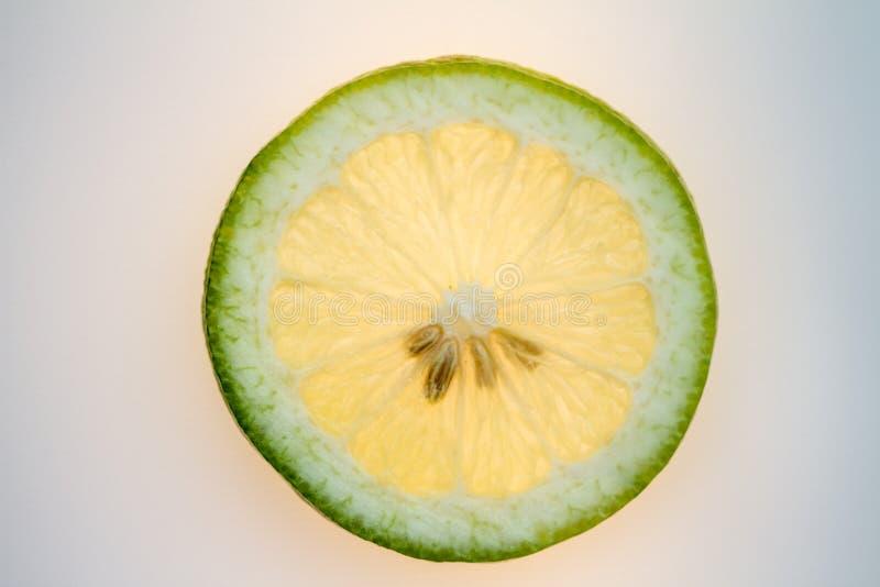 Un citron coupé en tranches dans le contre-jour images libres de droits
