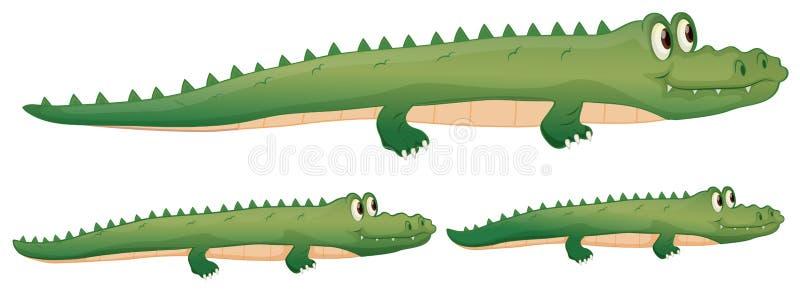 Un coccodrillo royalty illustrazione gratis