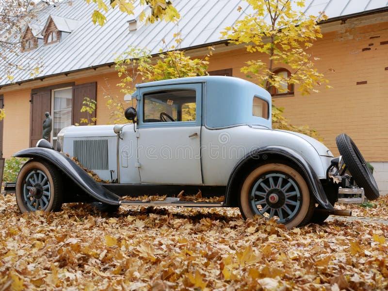 Un coche viejo en la yarda que se cubre con las hojas de arce amarillas fotografía de archivo libre de regalías