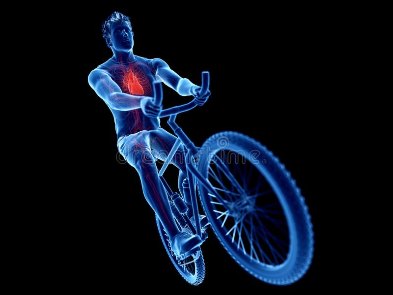un coeur de cyclistes illustration de vecteur