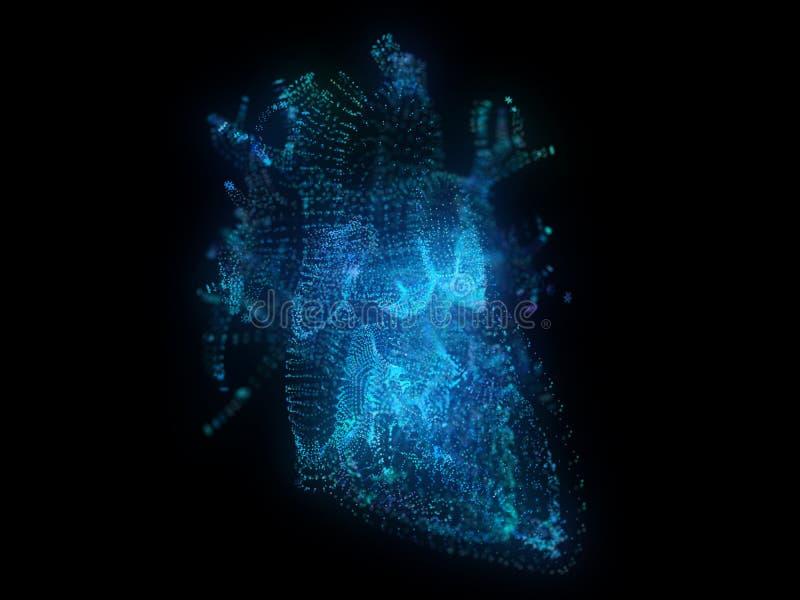 Un coeur de plexus illustration libre de droits