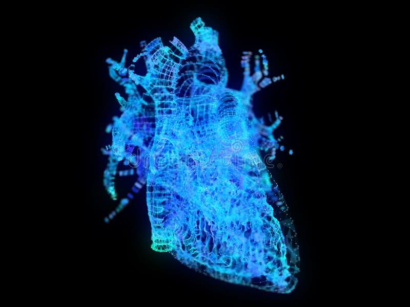 Un coeur de plexus illustration stock