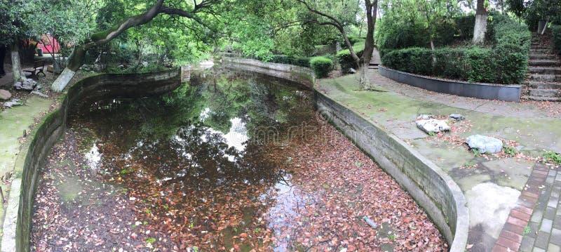 Un coin d'un parc ensoleillé de ressort photos stock