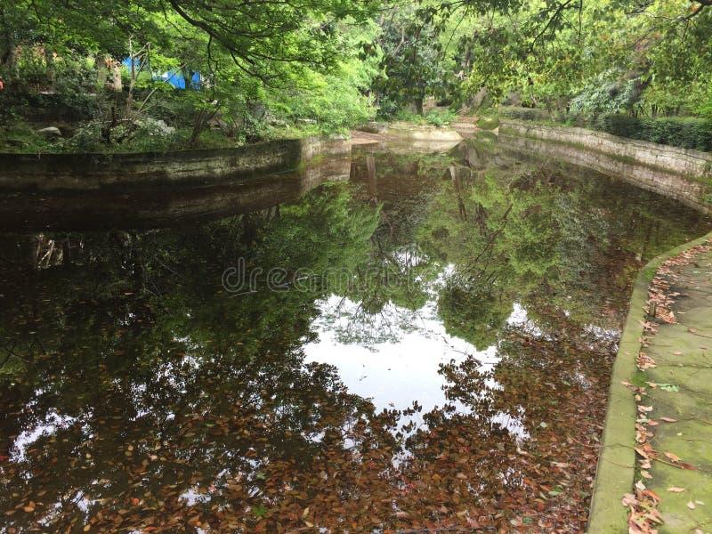 Un coin d'un parc ensoleillé de ressort image stock