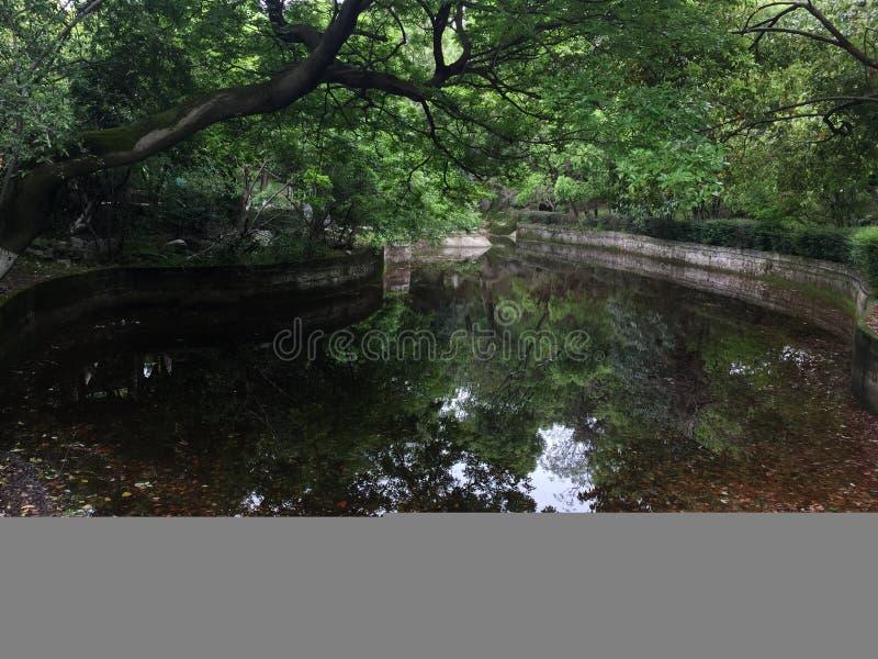 Un coin d'un parc ensoleillé de ressort image libre de droits