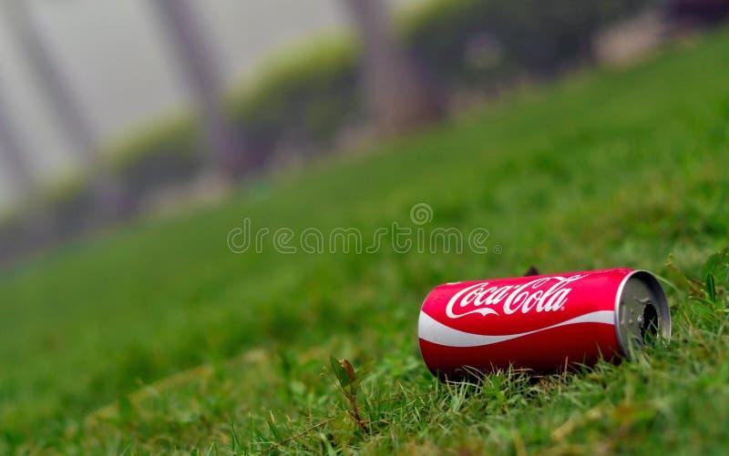 Un coke vuoto può su erba verde fertile immagine stock