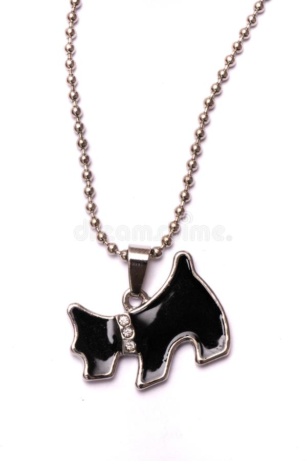 Un collar reflexivo coloreado negro formado perro fotos de archivo libres de regalías