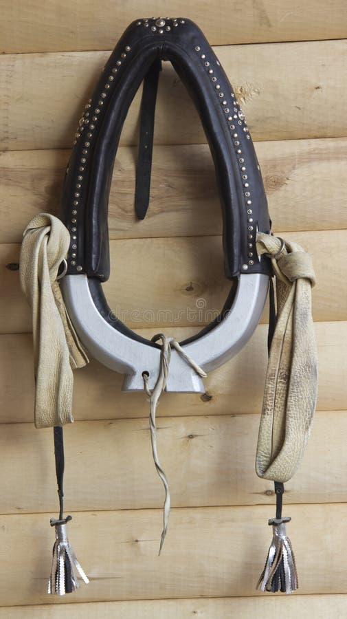 Un collier de cheval image libre de droits