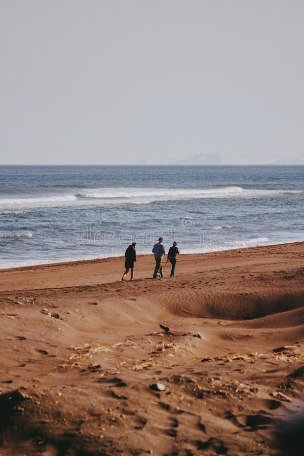 Un colpo verticale di tre amici che camminano su una spiaggia sabbiosa con un bello mare nei precedenti fotografia stock