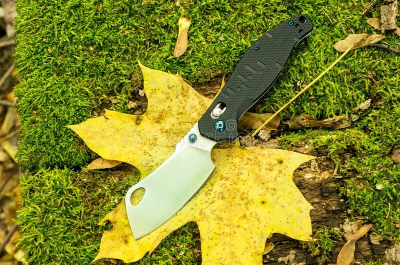 Un coltello della roncola su una foglia di acero Piegatura del coltello come un'ascia fotografia stock