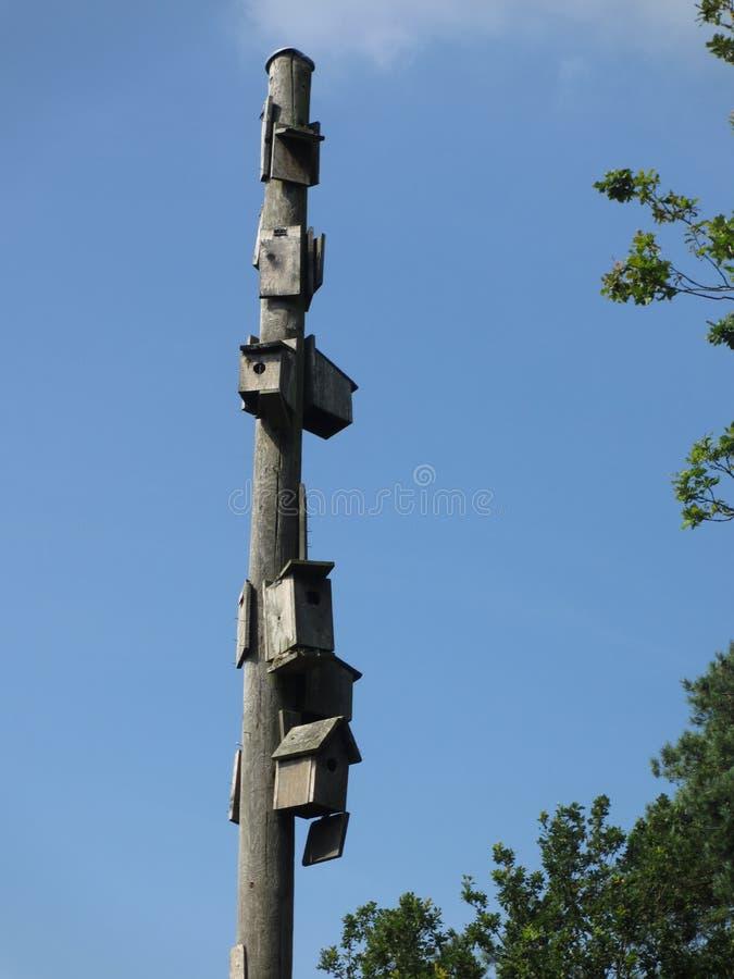 Un complesso operato della casa dell'uccello immagine stock libera da diritti