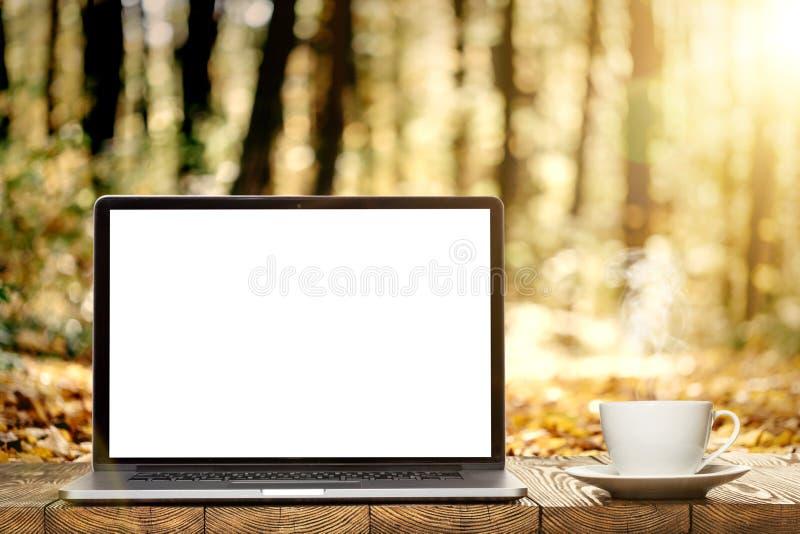 Un computer portatile sul piede fotografia stock libera da diritti