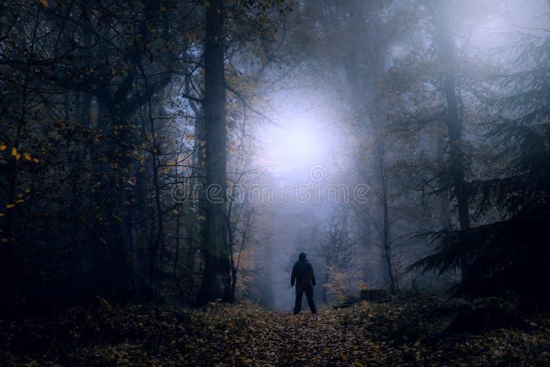 Un concetto misterioso pubblicare Una figura sola che sta su un sentiero nel bosco su una notte nebbiosa spettrale che esamina le fotografia stock libera da diritti