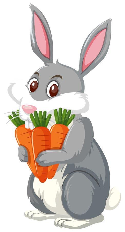 Un conejo que sostiene la zanahoria stock de ilustración