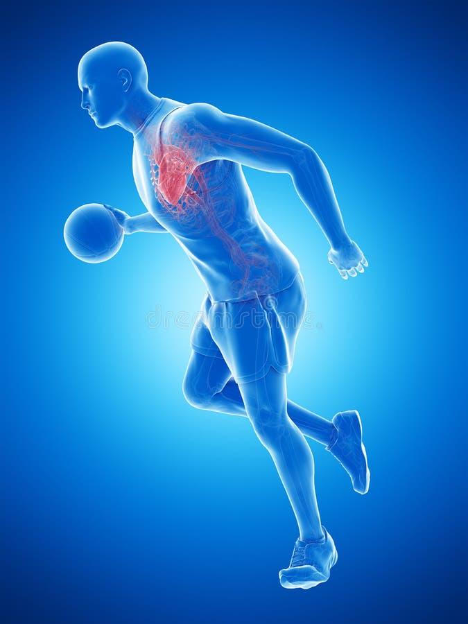 Un corazón de los jugadores de básquet stock de ilustración