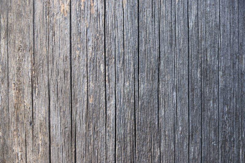 Un corte de un tronco de madera con las grietas y los anillos anuales para el uso como un fondo o textura imagen de archivo libre de regalías