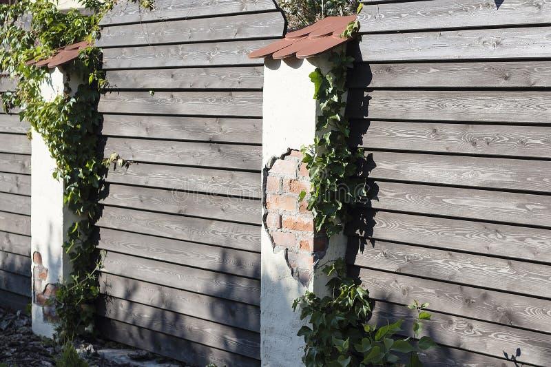 Un cortile soleggiato piacevole con erba verde e un recinto di legno piacevole immagini stock