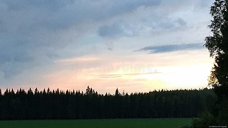 Un coucher du soleil, le pré et le forrest image stock
