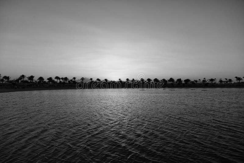 Un coucher du soleil plus parfait Le coucher du soleil sur la côte avec des palmiers et la réflexion du soleil arrosent Silhouett image stock