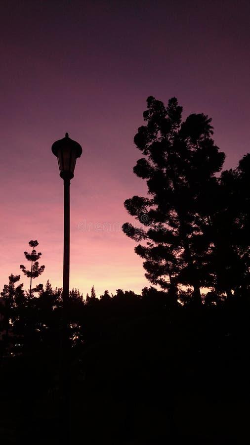 Un coucher du soleil pourpre avec le courrier Silhoutte de lampe images libres de droits