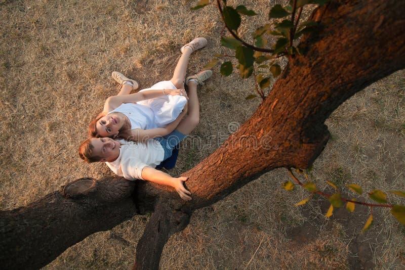 Un couple affectueux se repose sous un arbre photographie stock libre de droits