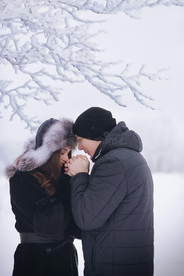 Un couple affectueux sur une promenade d'hiver Histoire d'amour de neige, magie d'hiver Homme et femme sur la rue givrée Le type  photo libre de droits
