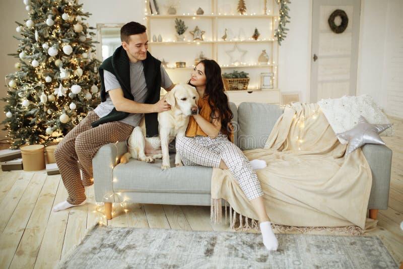 Un couple heureux est assis sur un canapé avec un chien, noël nouvelle année à la maison famille et date image libre de droits