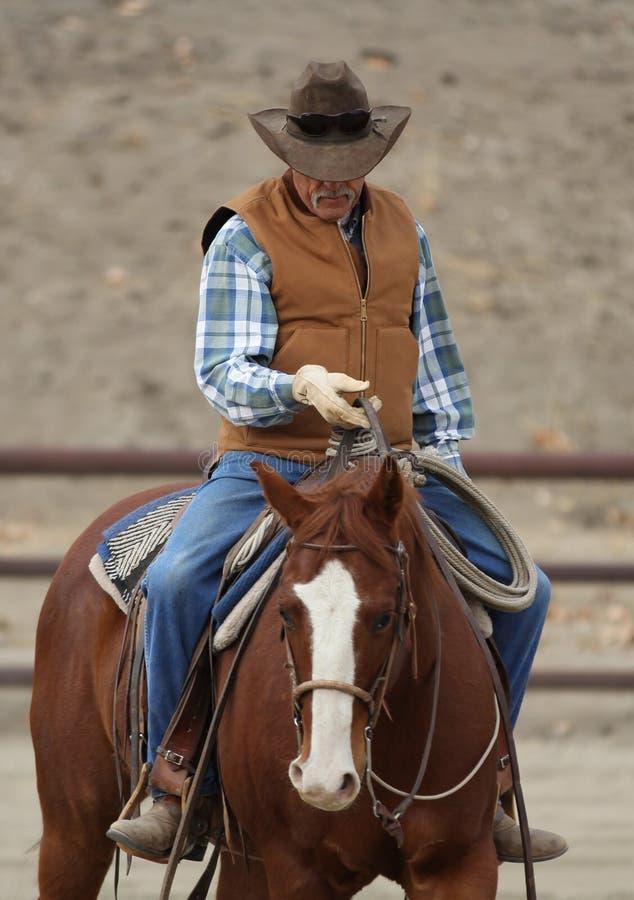 Un cowboy sta preparando un cavallo. immagine stock