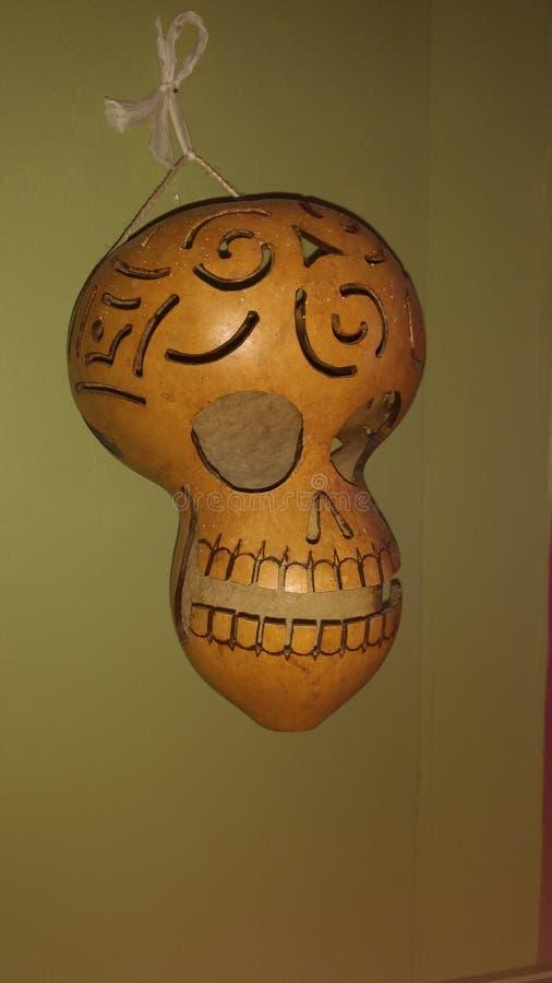 Un cráneo del huaje imagenes de archivo