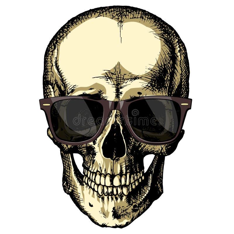 Un cranio umano con i vetri su un fondo in bianco royalty illustrazione gratis