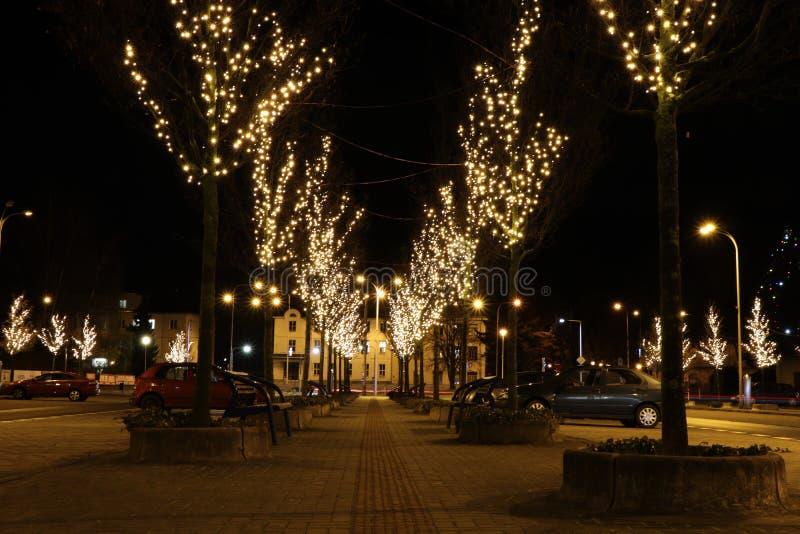 Un cuadrado hermoso en Frydek-Mistek en la República Checa rodeada por los árboles de navidad Una iluminación de los bulbos en ár imagenes de archivo